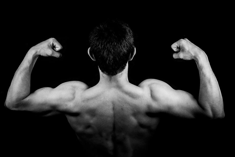 Muskelmasse aufbauen, Muskeln bekommen, mehr Muskeln, Trainingsplan